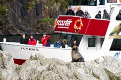 Milford Sound and Glaciers: Fly/Encounter Nature cruise/Fly