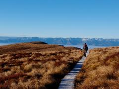 Kepler Track Luxmore Guided Day Heli Hike from Te Anau