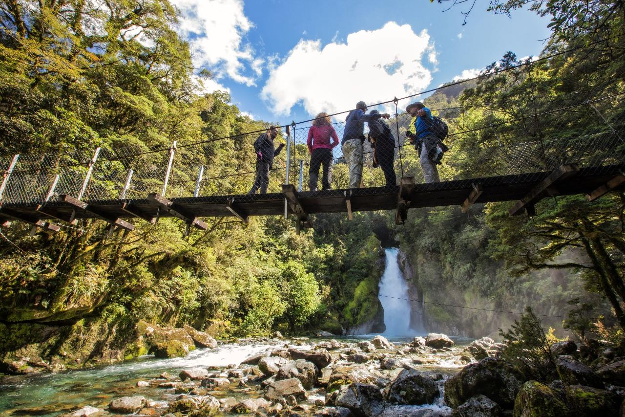 the milford track guided walk