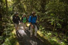Private Milford Track Guided Walk