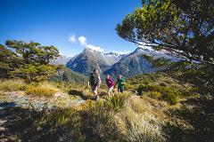 Routeburn Track Guided Walk from Te Anau