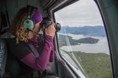SPECIAL - Milford Sound by land, sea and Helicopter Scenic Flight