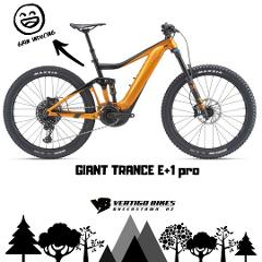 E-Bike Full Suspension Full Day Adult
