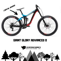 Pro Spec Carbon DH Bike and Lift Pass Combo Full Day