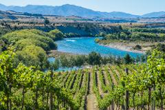 Private Full Day Wine Tour