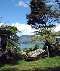 5 Day Upgrade Independent Walk - Furneaux Lodge, Punga Cove & 2 nights at Lochmara Lodge