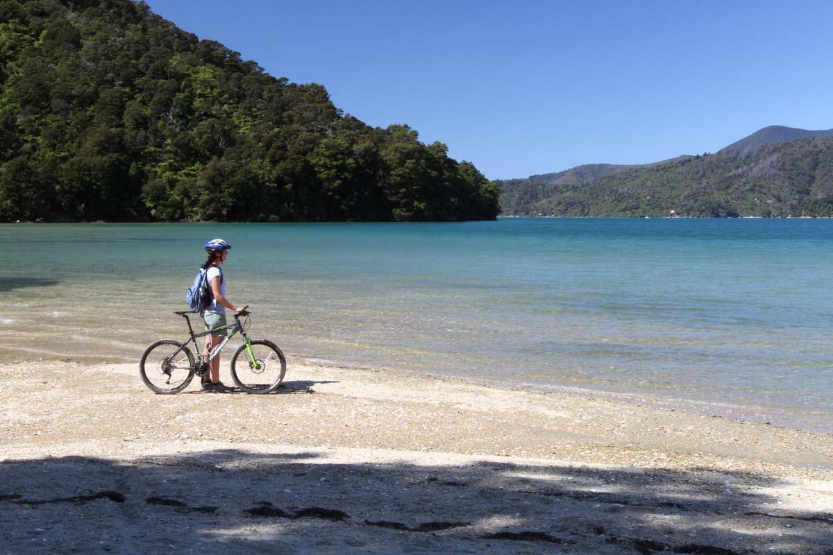 """21"""" Bike Hire Bike (XLarge/ Height from 6'1""""-6'4"""" or 185-193cm)"""