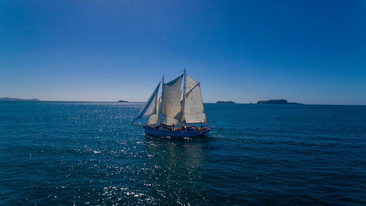 Great Mercury Island Cruise