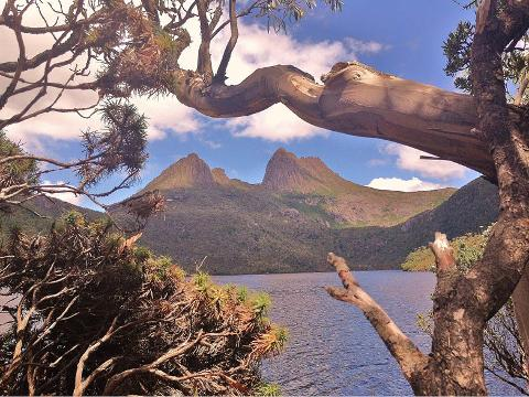 The Overland Track – Highlights and Details of your Journey Tasmania Australia