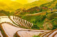 Guilin Rice Terraces: One Day Guided Group Tour with Lunch