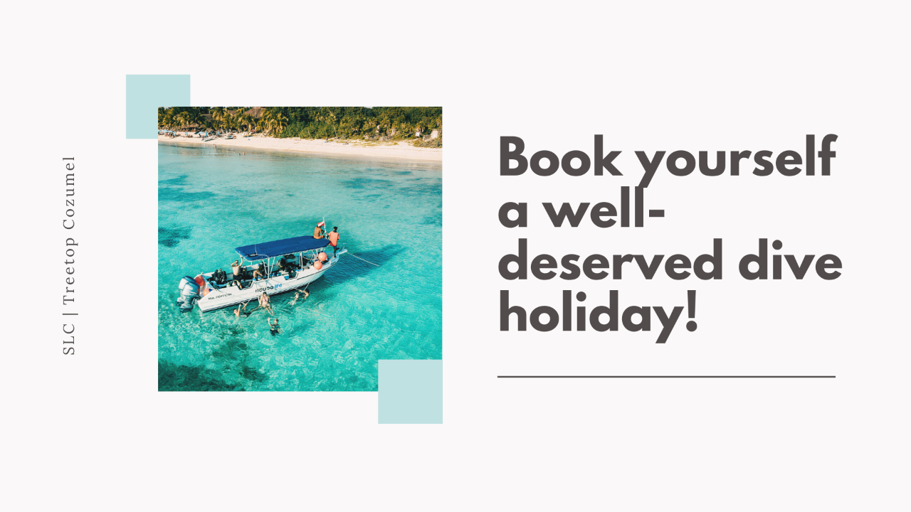 Stay & Dive Package for 1 Diver (2 Boat Dives per Day)