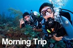 Morning - 2 Tank Boat Trip for Certified Divers (1 or 2 days)