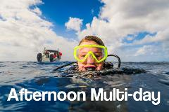 Afternoon 2 PM - Multi-day Trips for Certified Divers
