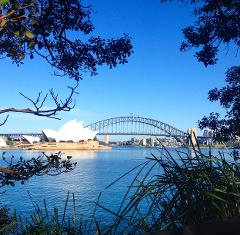 SYDNEY SAMPLER with BONDI BEACH Half Day Tour