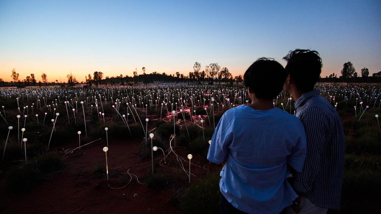 Uluru Sunrise & Field of Light (FOL)