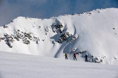 Manatee Glacier Trip
