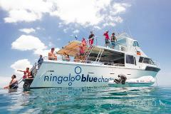 Luxury. Quality. Escape.  VIP luxury tour, exploring the reef at your own pace..