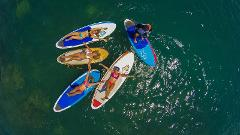 1HR Starboard SUP Rental