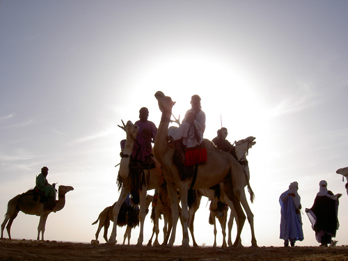 Méharée (camelback ride) in the Aïr Mountains- 12 to 14 days