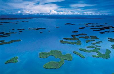 Bocas del Toro Getaway