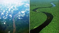 Congo Coast to River Odyssey: Jungle Train, Gorillas, and the Legendary Congo River
