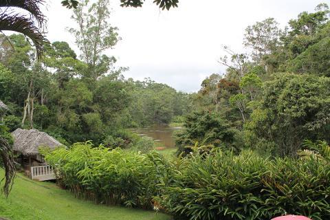 MTT Andasibe Mantadia Rainforest Adventure