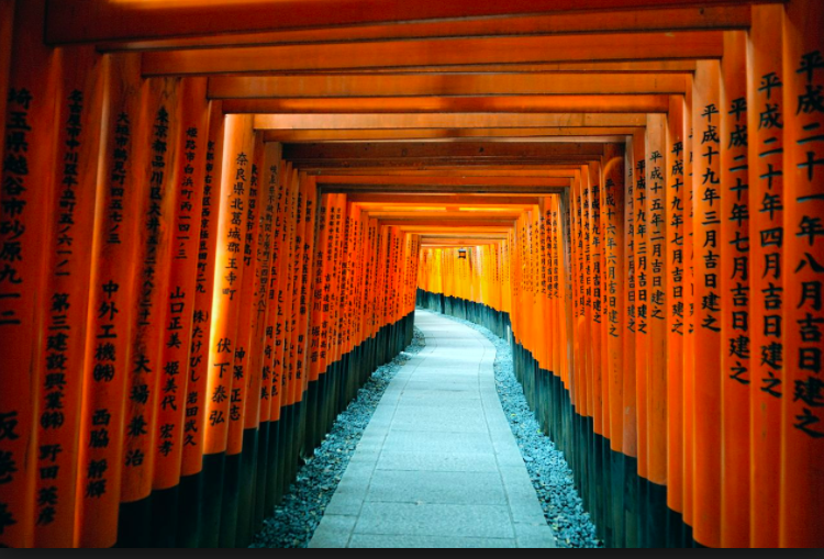 Discovering the roots of Japanese culture in Kyoto