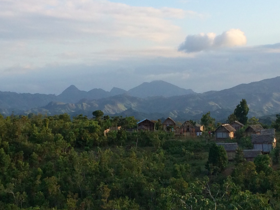 Sambava and Vanilla Coast Day Tour: River Ride, Vanilla Plantations, and Local Culture of SAVA