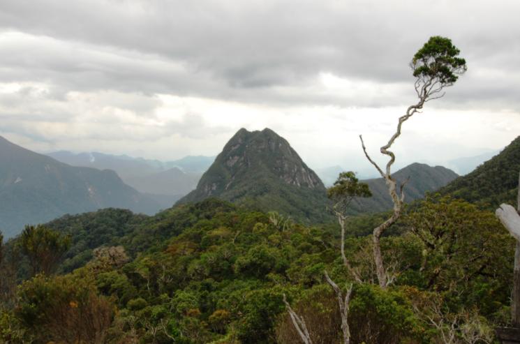Madagascar Vanilla Coast & Marojejy Park: Tour of SAVA from Sambava