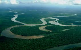 「sepik river」の画像検索結果