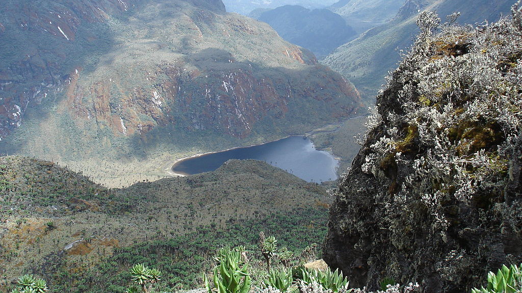 DRCongo Side - Rwenzori Mountains Trekking (from Kisangani or Goma)