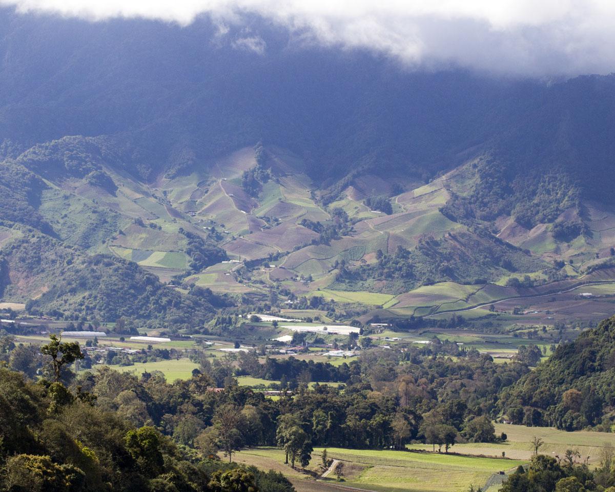 Chiriqui Cloudforest Getaway