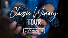 Classic Winery Day Tour