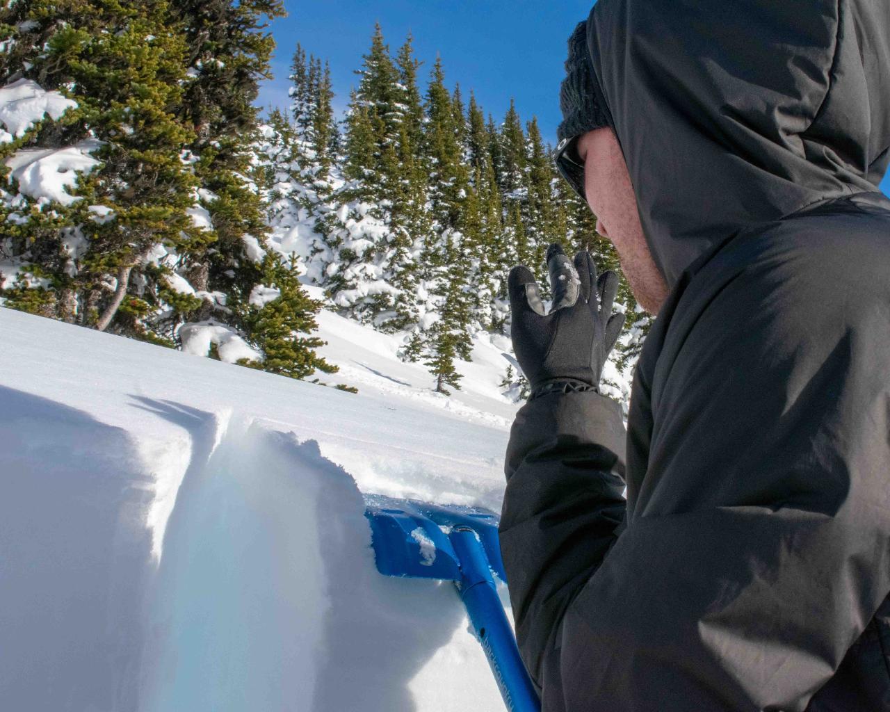 Private - Avalanche Skills Training 1 - Snowshoe