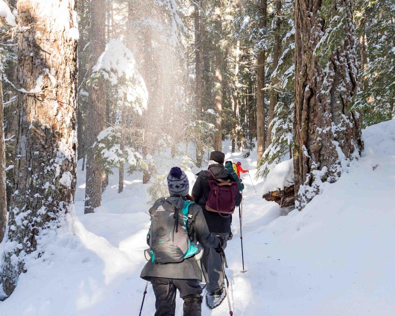 PRV - Half Day Snowshoe Tour - Coast