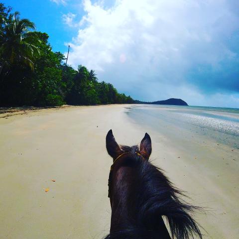 Midmorning Beach Ride