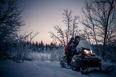 Snowmobile and moose views