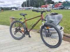Half Day Mountain Bike Hire in association with Twin Coast Cycle Transport