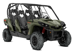 4 Seat Buggy