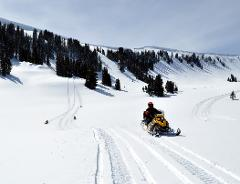 3HR Guided Snowmobile Trip