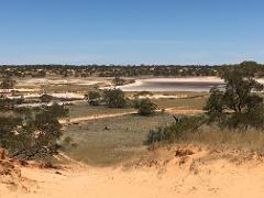 Australian Bush Delights - Murray Sunset National Park & Hattah State Forest Half Day Tour