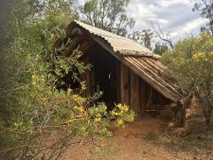 Murray River, History, Heritage & Wildlife Tour - Millewa & Murray River