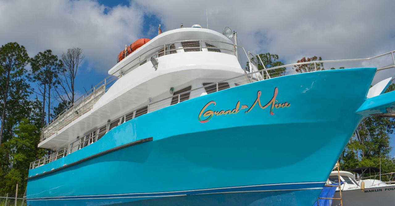 Shell Island Cruise & Dolphin Watch