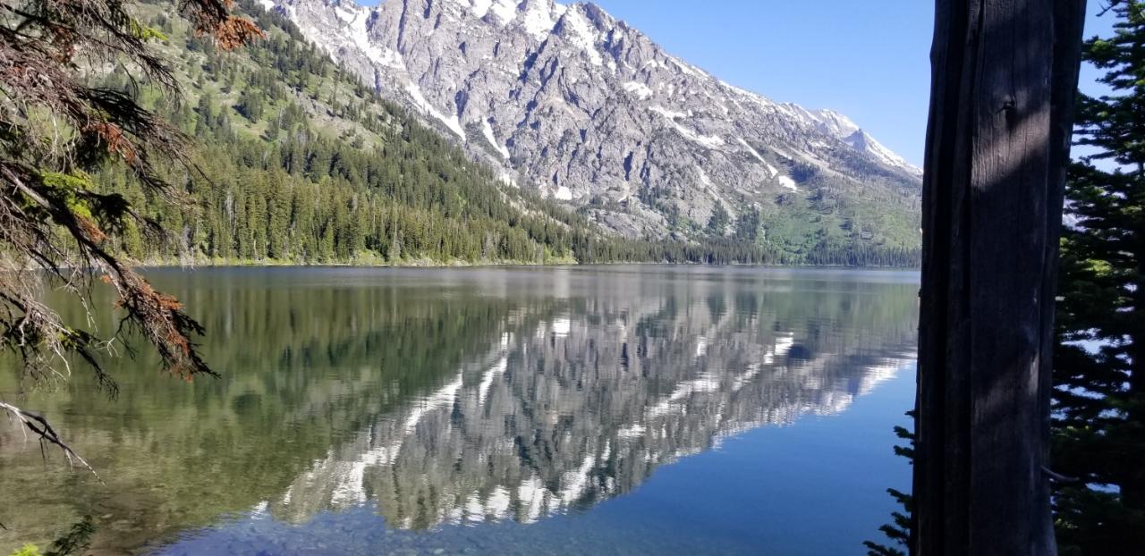 Pioneer Tour Of Yellowstone Grand Tetons Ambassador Tour