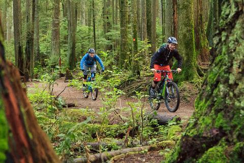 Try Mountain Biking