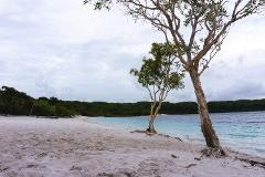 Pack-free Accommodated: Lake McKenzie Central Hike - 2 Days/ 2 Night