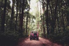 Couples 4wd Camper - 2 Days (Fraser Island)