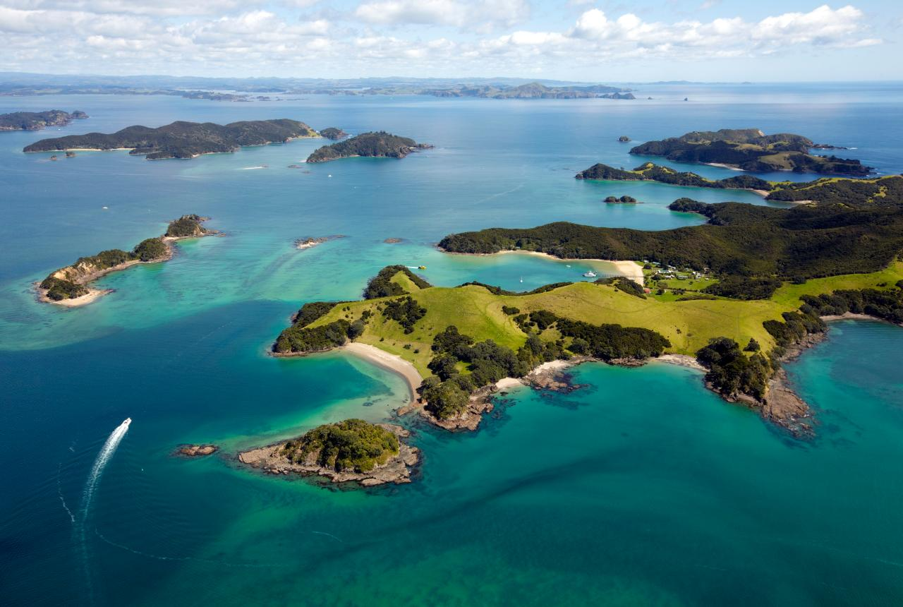 Winterless North - Bay of Islands Cruise & Island Tour // 3 hour