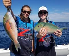 1. Half Day Mixed Fishing Charter