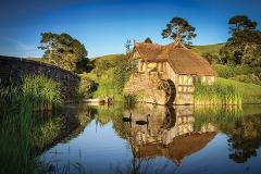 Rotorua to Auckland via Hobbiton Movie Set and Waitomo Caves One-Way Private Tour